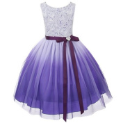 Kids Dream Purple Ombre Rosette Special Occasion Dress Toddler Girl 2T-4 by Kids Dream