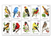USPS Forever Stamps Songbirds Booklet of 20 (1, 20 stamps) Size: 20 stamps PackageQuantity