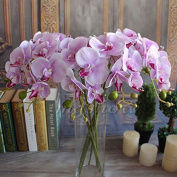 Fangfang Artificial Fake Silk Flower Phalaenopsis Butterfly Orchid Home Office Wedding Decoration
