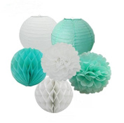 Since Pack of 6 White Mint Green Paper Crafts Tissue Paper Honeycomb Balls Lanterns Paper Pom Poms Birthday Wedding Party Decoration