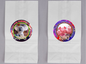 12 SING Birthday Party Favour BAGS with Stickers