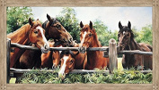 Digital Panel Pleasant Pastures Horses By Fence Northcott Cotton Fabric DP21411-34