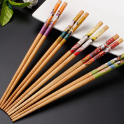 KaLaiXing Five Pairs Of Decorated Japanese Chopsticks--5 colour-Zf-1