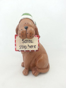 Tii Collections - 15cm Resin Dog with Hat and Sign, Reads