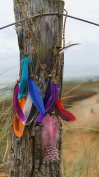 Feather Hair Band: Colourful