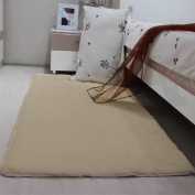 MultiWare Fluffy Area Rugs Anti-Skid Yoga Carpet For Living Room Rugs Bedroom Brown