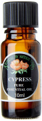 Natural by Nature 10 ml Cypress Pure Essential Oil
