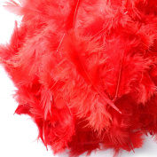 C-Pioneer Pack 200 Fluffy Marabou Feathers Card Making Embellishments for Arts and Crafts Decoration