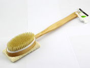 Shower Body Brush for Dry Skin Brushing with Natural Boar Bristles