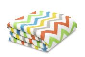 Little Starter Plush Toddler Blanket, Multi Chevron