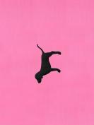 Victoria's Secret PINK Yoga Mat Pink Rally