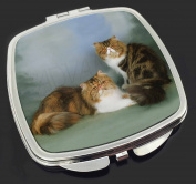 Tabby Tortie Persian Cats Make-Up Compact Mirror Stocking Filler Gift