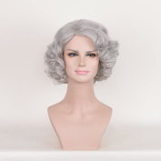 DENIYA Short Curly Silver Grey Lace Front Wigs for Women Cosplay