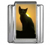 CAT AT SUNSET Photo Italian Charm 9mm Link - 1 x CA098 Single Bracelet Link