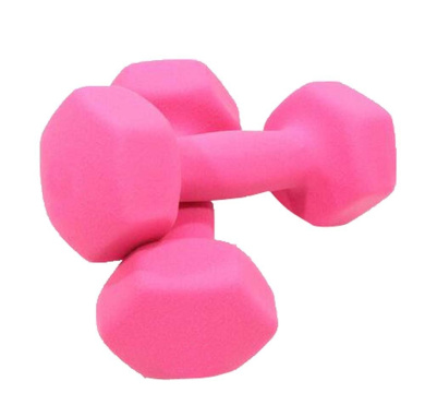 Set of 2 Pink Home Exercise Dumbbells Body Sculpting Hand Weights