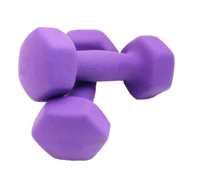 Set of 2 Non-Slip Grip Dumbbells Body Sculpting Hand Weights 0.5KG/Each