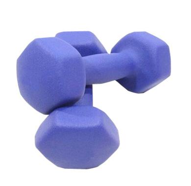 Set of 2 Women Yoga Dumbbells Non-slip Exercise Body Sculpting Hand Weights