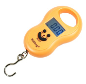 WeiHeng 50Kg / 5g-10g Portable Digital Hanging / Fishing Scale with Lighted LCD Display