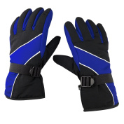 TRIXES Warm Outdoor Cold Weather Winter Sports Snow Gloves