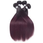 REINE Two Toned Brazilian Straight Hair Weave 4pcs Burgundy Red Wine Straight Brazilian Hair Weave Bunldes T1B/99J Ombre Human Hair