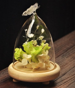 Lx.AZ.Kx Gift Ideas Glass View Hood Cover Glass Butterfly Micro Glass Flower Vases Landscape,View Cover+Wooden Frame