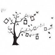 Hidodo Removable Tree Bird Wall Stickers Art Decal Home Room Kids Decor
