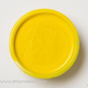 Createx Auto-Air Colours 120ml Iridescent Brite Yellow 4350 Custom Airbrush Paint. by SprayGunner