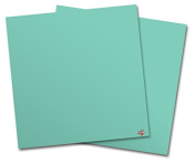 WraptorSkinz Vinyl Craft Cutter Designer 12x12 Sheets Solids Collection Seafoam Green - 2 Pack
