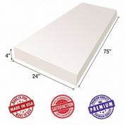 """Upholstery Foam Cushion Sheet- 10cm x 60cm x 75""""-High Density Support-Premium Luxury Quality- Good for Sofa Cushion, Mattresses, Wheelchair, Poker Table, and Much More- Dream Solutions USA"""