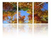 Mon Art 41cm x 60cm x 3 Pics Look Up at the Sky Autumn Forest Golden Leaves Painting Originality Wall Art Modern Canvas Decor Decoration Gallery No Stretched and UnFramed