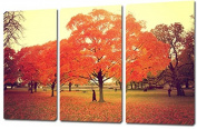 Mon Art 41cm x 60cm x 3 Pics Red leaves Maple Park Public Garden Lovers Painting Originality Wall Art Modern Canvas Decor Decoration Gallery No Stretched and UnFramed