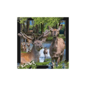 Spectacular 3D magnet - RED DEER