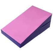 Giantex Incline Gymnastics Mat Wedge Folding Gymnastics Gym Fitness Tumbling