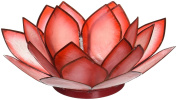 Lotus Tea Candle Light Holder Capiz Shell - Red 1st Chakra Something Different
