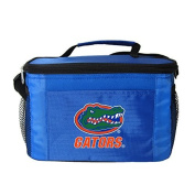 New NCAA College 2014 Team Colour Logo 6 Pack Lunch Tote Bag Cooler - Pick Team