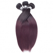 REINE T1B/99J Ombre Burgundy Straight Hair With Closure 3pcs Two Tone Red Wine Straight Brazilian Hair Weave Bundles With Closure
