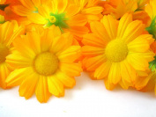 ICRAFY 24 Daisy Silk Head Orange Colour Size 3.8cm Artificial Flowers Heads Fabric Floral Supplies Wholesale Lot for Wedding Flowers Accessories Make Bridal Hair Clips Headbands Dress