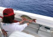 Fish Ruler For Boat