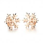 Hunputa 2PCS Rose Gold Snowflake Earrings Women Ear Studs Piercing