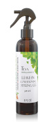 Teva Organic Leave-In Conditioner & Light Hold Styling Gel   Silicone Free
