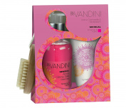 Hand Care Giftset with Nail Brush Imported From Germany Exotically Scented with Taramind & Ginger Vegan Paraben Free Invigorating Hand Soap Enriched Hand Lotion by SENSUAL aldo Vandini