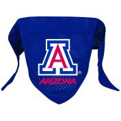 NCAA Arizona Wildcats Pet Bandana