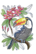 Nature weaved in threads, Amazing Birds Kingdom [ Tropical Toucan Sketch ] [Custom and Unique] Embroidered Iron on/Sew patch [24cm 18cm ] [Made in USA]