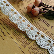 Ivory 5 Yards Flower Embroidery Eyelet Cottom Lace Trim Collar Extender Sewing Costumes Supplies 2.5cm Wide