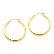 3.75mm x 30mm Polished 14K Yellow Gold Domed Round Tube Hoop Earrings