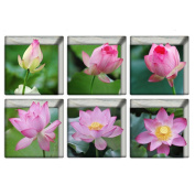 LEERYA 6pcs 13x13cm Lotus Pattern 3D Anti Slip Waterproof Bathtub Sticker
