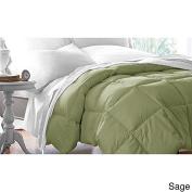 Dovedote All season 233 TC Cotton Down Alternative Comforter, Queen, Peal Green