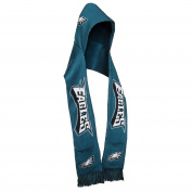 NFL Football New Knit Hooded Scarf - Pick Team