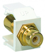 Leviton 40830-BER QuickPort RCA Gold-Plated Connector w/ Red Stripe - Black