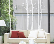 N.SunForest Nature White Birch Tree Wall Decal Sticker Art Branch Leaves Decor for Sitting room Restroom Study Nursery Office Supermarket Door Window
